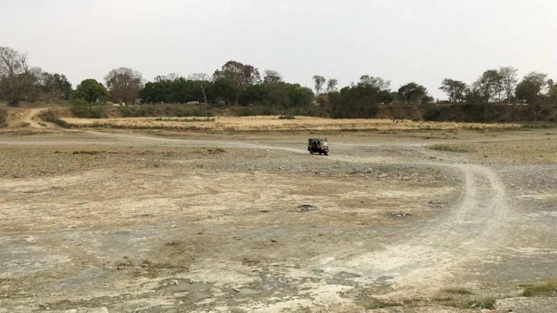 The dry Ken river, at Behrasar village. Here groundwater has run out in most parts of the village. Photo by Siddharth Agarwal.