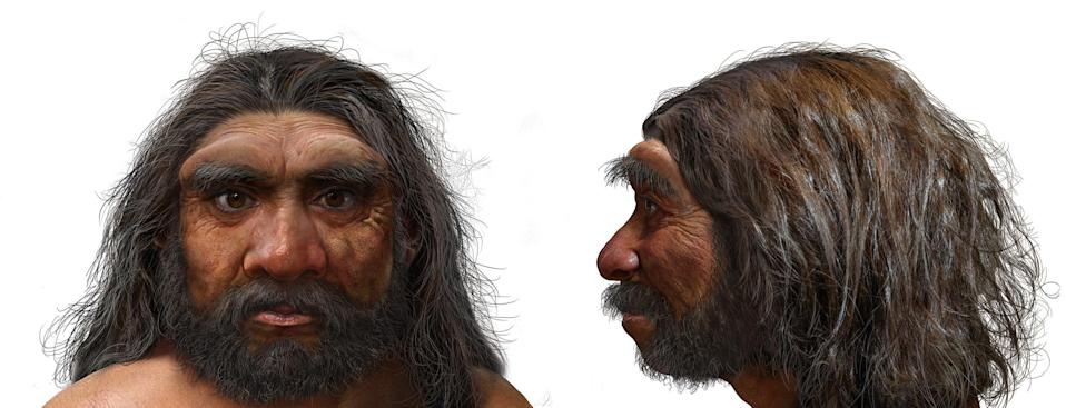 An artist's impression showing Dragon Man's large eye sockets, thick brow ridges and wide mouth (Chuang Zhao/PA)