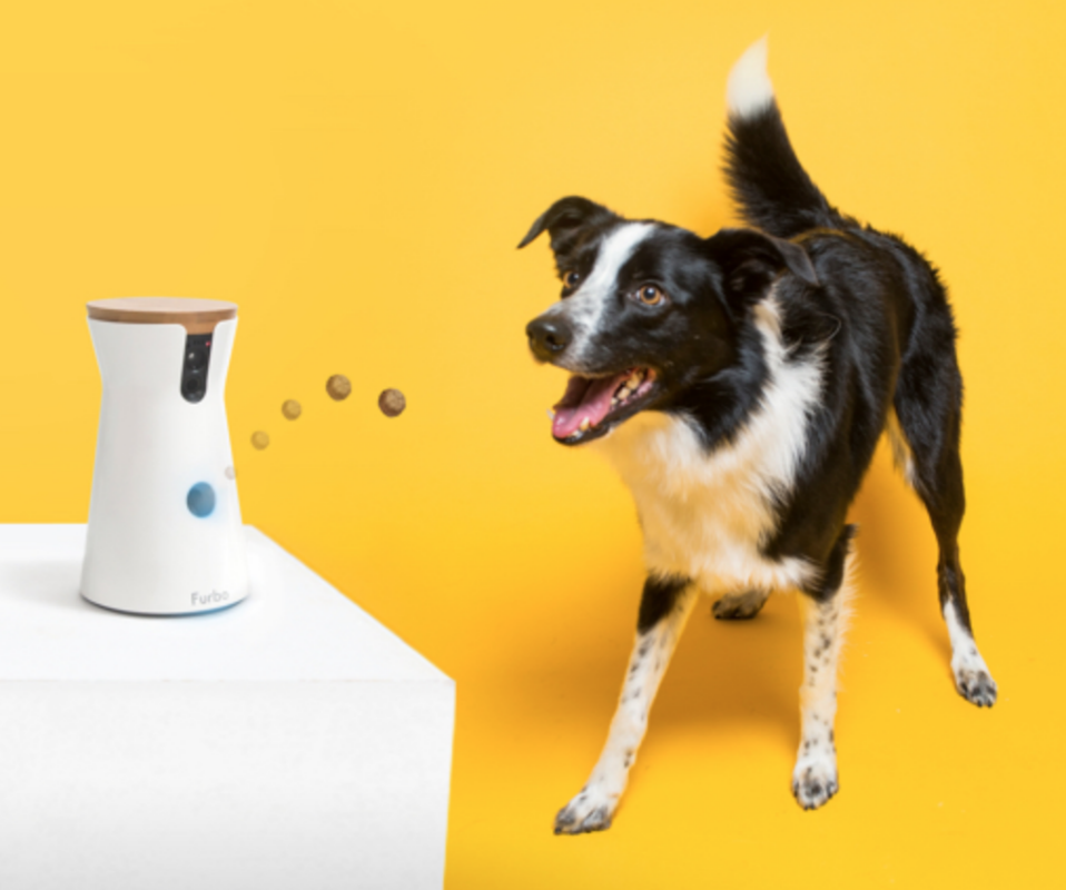 The wildly popular Furbo dog camera is nearly 50 percent off at Amazon — save $115, but only for Black Friday!