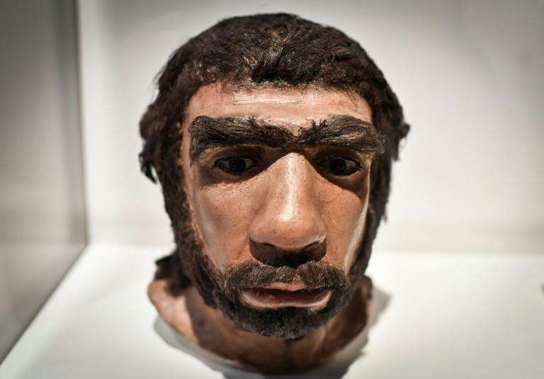 The carving suggests Neanderthals could have influenced Homo Sapiens instead of the other way around