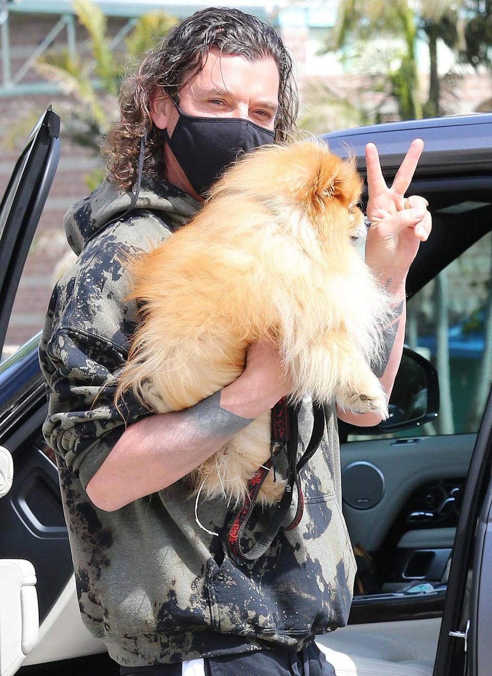 <p>Gavin Rossdale heads to the park with his dog Chewy on Monday in L.A.</p>