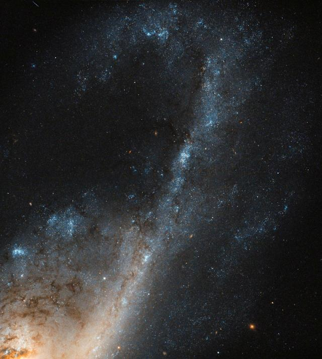 <p>A view of the NGC 4536 galaxy captured by the Hubble's Wide Field Camera 3 (WFC3) and released by NASA on April 14, 2017. Located roughly 50 million light-years away in the constellation of Virgo (The Virgin), it is a hub of extreme star formation. (Photo: NASA/Hubble Space Telescope/Handout via Reuters) </p>