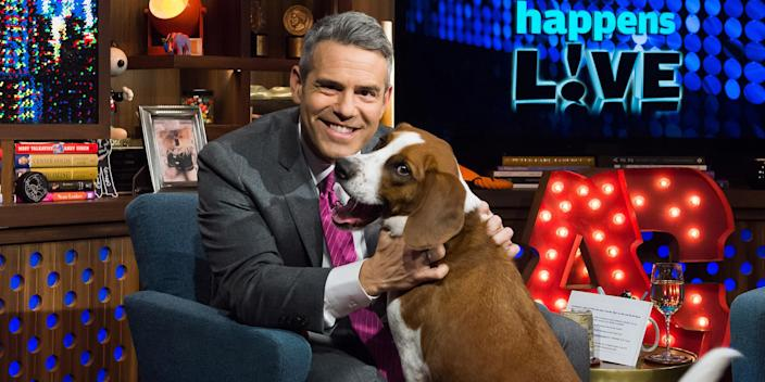 Andy Cohen and Wacha (Charles Sykes / NBCUniversal via Getty Images)