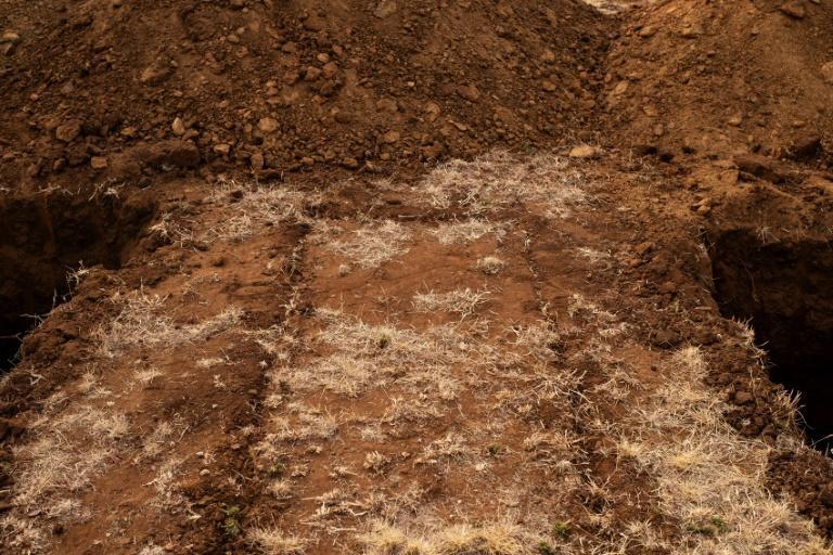 Newly dug graves at the Honingnestkrans cemetery, in Pretoria, South Africa, for victims of the COVID-19 are seen on July 9, 2020