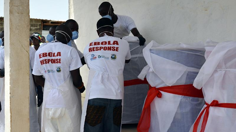 Efforts of Red Cross volunteers to properly bury highly contagious bodies potentially averted as many as 10,452 Ebola cases (AFP Photo/ZOOM DOSSO)
