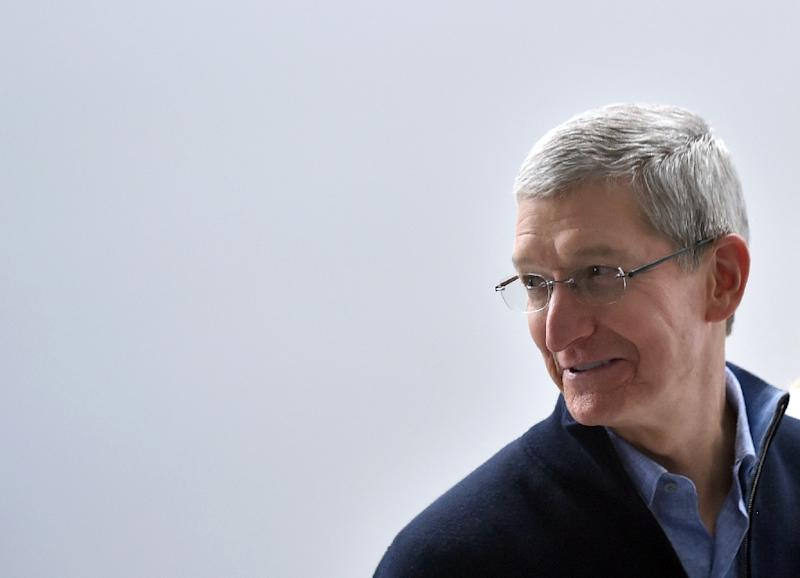 "Apple CEO Tim Cook, pictured here in San Francisco, California on March 9, 2015, tweeted that his company was ""deeply disappointed"" in the new law (AFP Photo/Josh Edelson)"