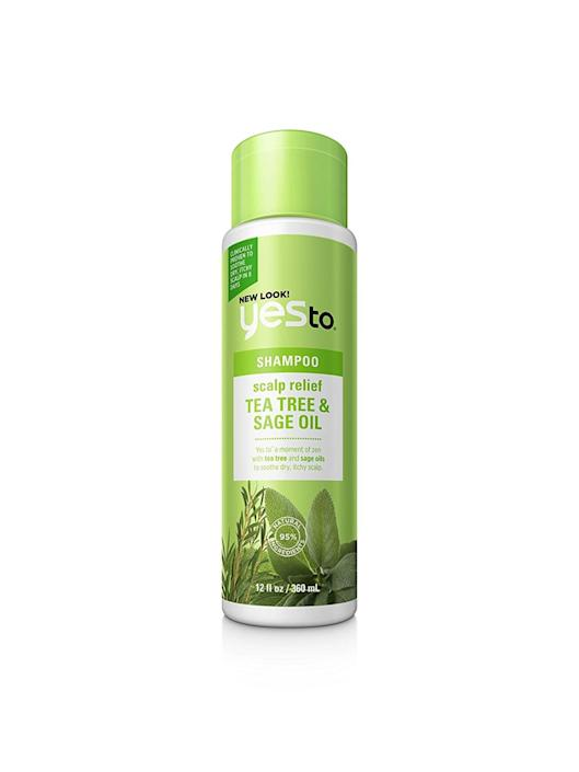 yes to, best tea tree oil shampoos