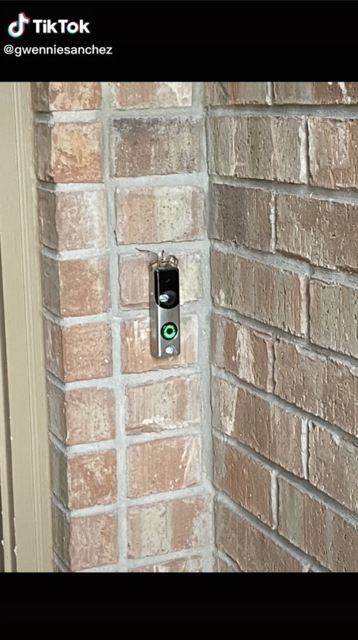 A screenshot of a TikTok video showing a large spider sitting on top of a doorbell.