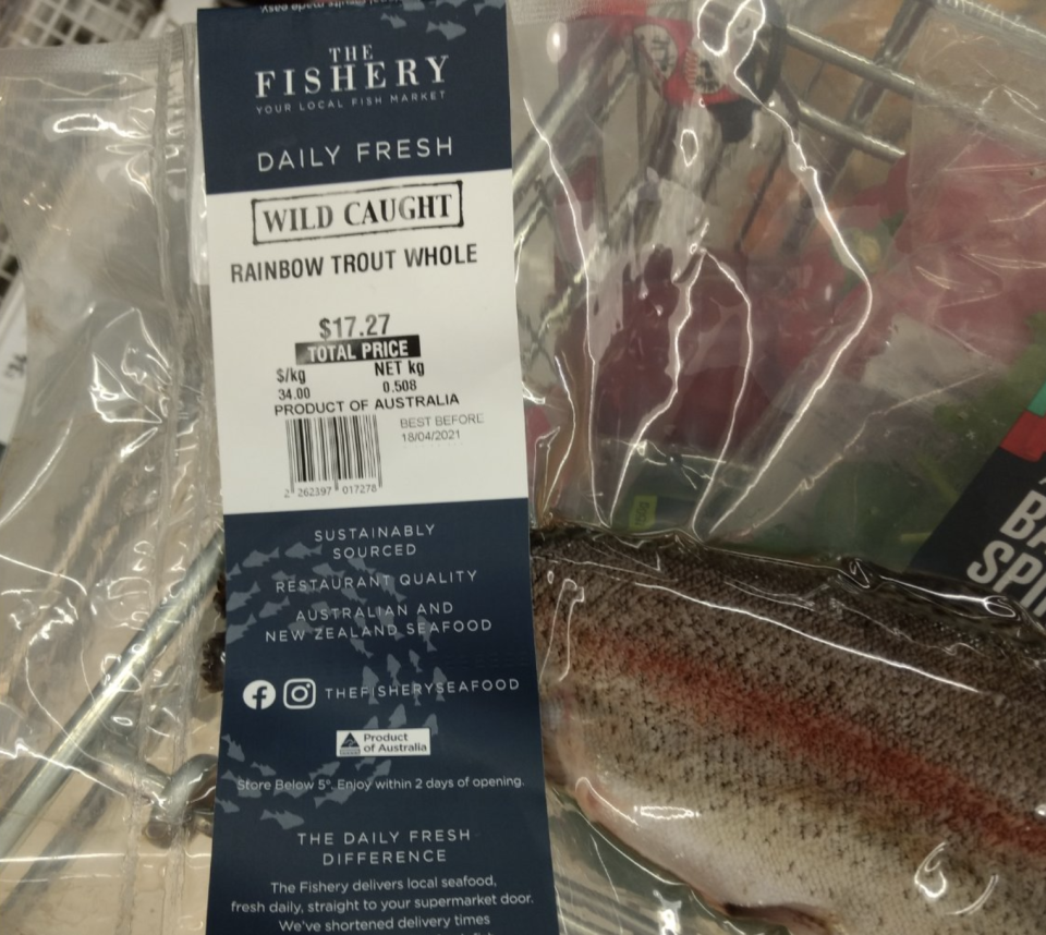 The rainbow trout incorrect