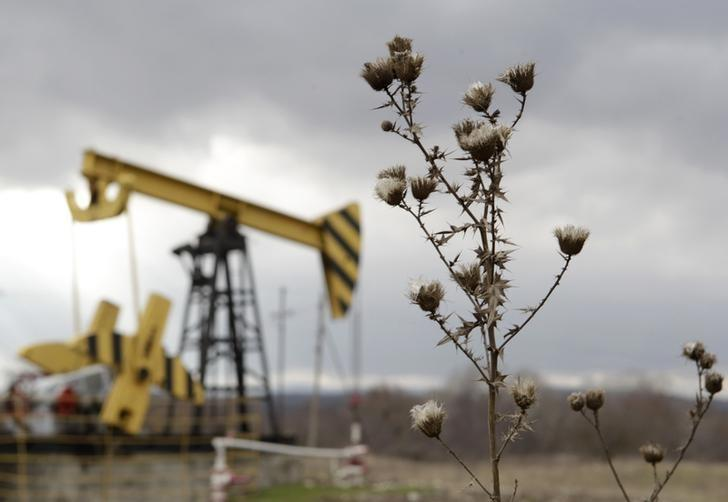 Plants are pictured near an oil pump, owned by oil company Rosneft, in Krasnodar region