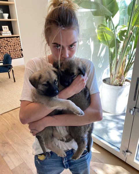 """<p>The actress shared a series of photos of herself kissing her fostered puppies Bowie and Hendrix during the coronavirus pandemic.</p><p>She captioned the sweet snap: 'Fostering these cuties during quarantine and you should.'</p><p><a href=""""https://www.instagram.com/p/B-NmqOUl4Tc/?utm_source=ig_web_copy_link"""" rel=""""nofollow noopener"""" target=""""_blank"""" data-ylk=""""slk:See the original post on Instagram"""" class=""""link rapid-noclick-resp"""">See the original post on Instagram</a></p>"""
