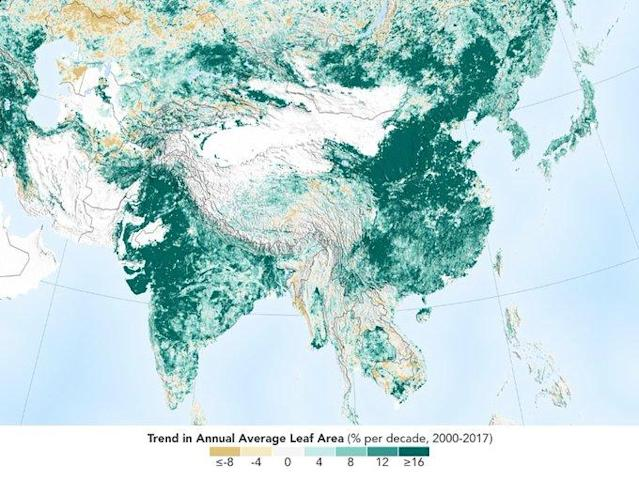 Over the last two decades, the Earth has seen an increase in foliage around the planet, measured in average leaf area per year on plants and trees. Data from NASA satellites shows that China and India are leading the increase in greening on land. The effect stems mainly from ambitious tree planting programs in China and intensive agriculture in both countries.