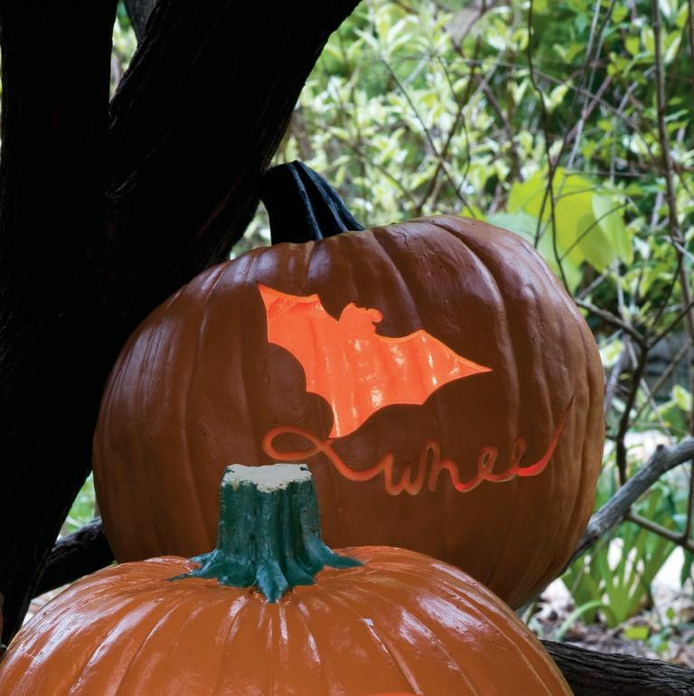 """<p>Use a U-shaped carving tool to make <a href=""""https://www.womansday.com/home/crafts-projects/a28637404/fly-a-kite-pumpkin/"""" rel=""""nofollow noopener"""" target=""""_blank"""" data-ylk=""""slk:this pumpkin carving"""" class=""""link rapid-noclick-resp"""">this pumpkin carving</a> idea of a friendly bat taking flight.</p><p><em><strong><a href=""""https://www.womansday.com/home/crafts-projects/a28637281/fly-a-kite-pumpkin-stencil/"""" rel=""""nofollow noopener"""" target=""""_blank"""" data-ylk=""""slk:Get the Fly a Kite Pumpkin stencil."""" class=""""link rapid-noclick-resp"""">Get the Fly a Kite Pumpkin stencil.</a></strong></em></p><p><a class=""""link rapid-noclick-resp"""" href=""""https://www.amazon.com/Driak-Stitching-Groover-Skiving-Leathercraft/dp/B079NQF69T?tag=syn-yahoo-20&ascsubtag=%5Bartid%7C10070.g.950%5Bsrc%7Cyahoo-us"""" rel=""""nofollow noopener"""" target=""""_blank"""" data-ylk=""""slk:SHOP U-SHAPED CARVING TOOL"""">SHOP U-SHAPED CARVING TOOL</a> </p>"""