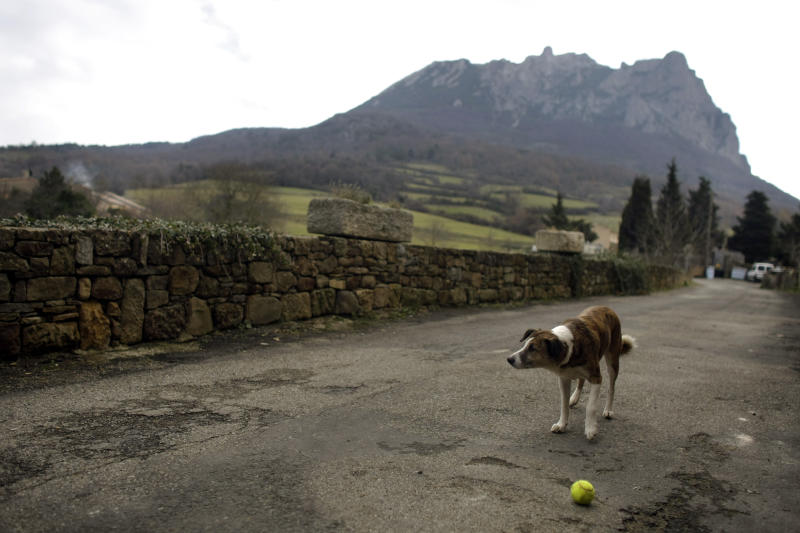 A dog plays with a tennis ball backdropped by the Pic de Bugarach mountain in the town of Bugarach, France, Thursday, Dec. 20, 2012. The clock is ticking down to Dec. 21, the supposed end of the Mayan calendar, and from China to California to Mexico, thousands are getting ready for what they think is going to be a fateful day. The sleepy town of Bugarach, nestled in the French Pyrenees mountains, is bracing for the arrival of hundreds of New Age enthusiasts and UFO believers that want to witness the end of the Mayan Long Count calendar. (AP Photo/Marko Drobnjakovic)