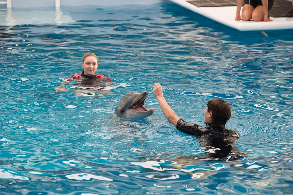 """<p><strong>What it's about:</strong> """"Winter the dolphin, who survived a tragic injury by receiving a prosthetic tail, bonds with an orphaned baby dolphin after her beloved pool mate dies.""""</p> <p><a href=""""https://www.netflix.com/title/70305955"""" class=""""link rapid-noclick-resp"""" rel=""""nofollow noopener"""" target=""""_blank"""" data-ylk=""""slk:Stream Dolphin Tale 2 on Netflix!""""> Stream <strong>Dolphin Tale 2</strong> on Netflix!</a></p>"""