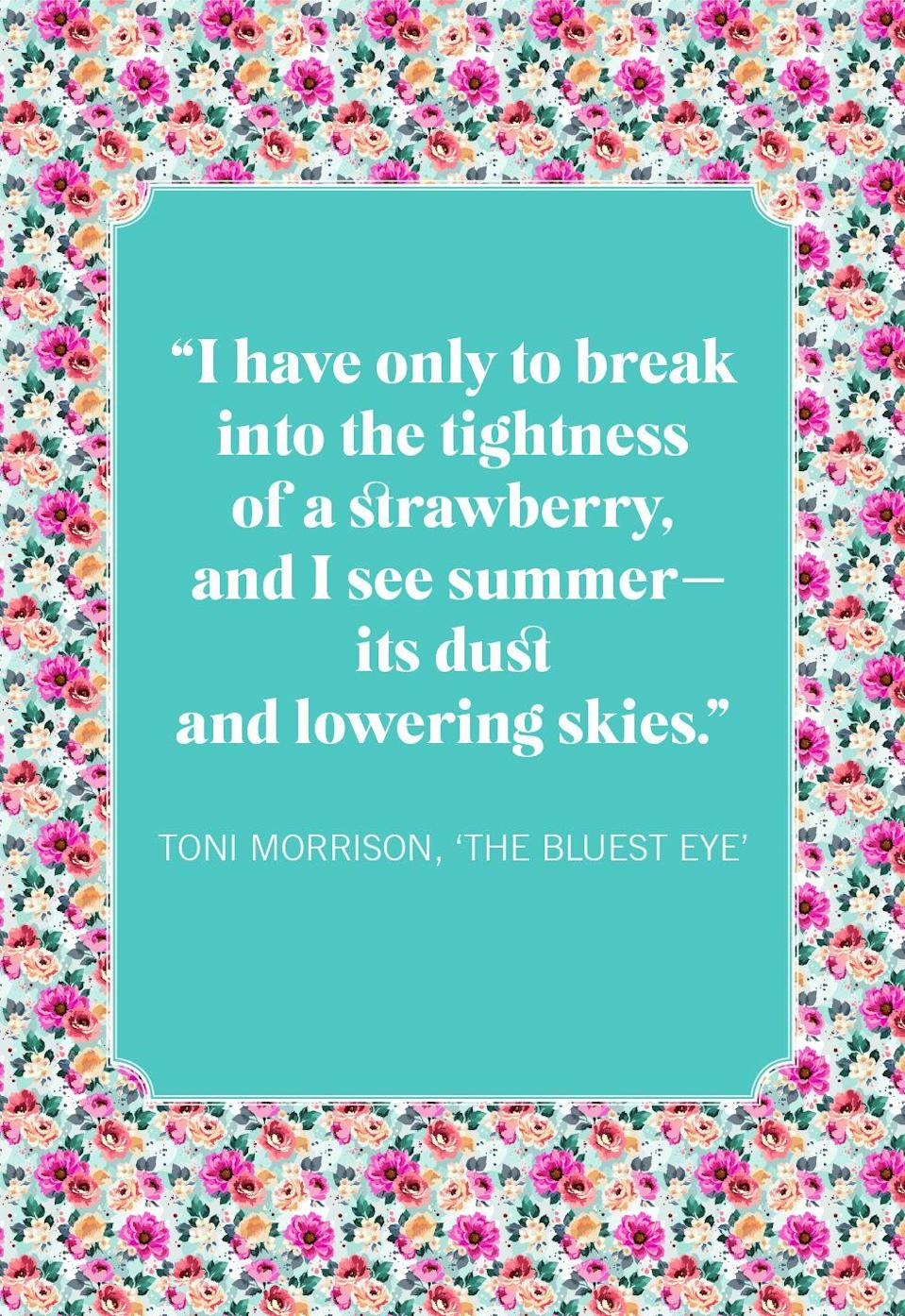 """<p>""""I have only to break into the tightness of a strawberry, and I see summer—its dust and lowering skies.""""</p>"""