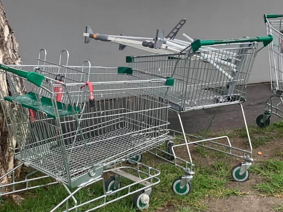Pictured are the Woolworths trolleys on the road in Carnegie.