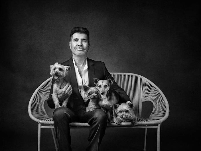 Simon Cowell with his dogs Squiddly, Diddle, Freddy and Daisy (Andy Gotts / SWNS)
