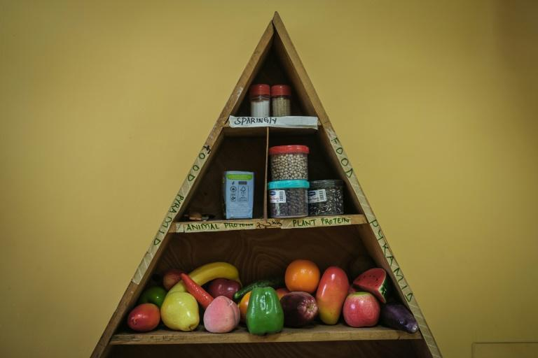 Mock-ups of fruit and vegetable and fruits at an MSF clinic for heroin addicts, to help addicts learn about nutrition