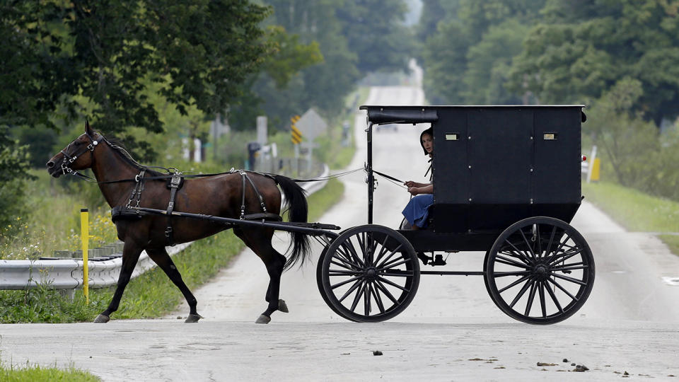 Amish in Ohio. (Tony Dejak/AP)