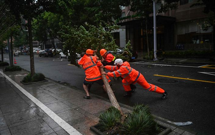 Workers attempt to move a fallen tree due to strong winds in Ningbo, eastern China's Zhejiang province, on July 25, 2021, ahead of Typhoon In-Fa's expected landfall in the region - AFP