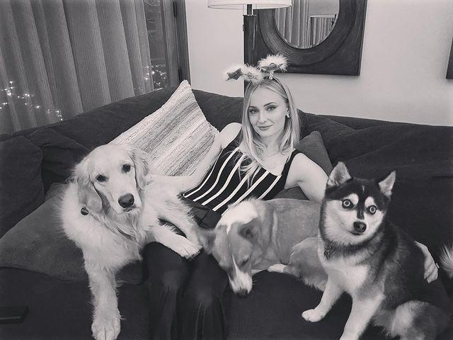 """<p>Turner shared a photo with her pups, <a href=""""https://www.instagram.com/p/CJfSSM2Bxl0/?utm_source=ig_embed"""" rel=""""nofollow noopener"""" target=""""_blank"""" data-ylk=""""slk:captioning the black and white photo"""" class=""""link rapid-noclick-resp"""">captioning the black and white photo</a> with her fur babies, """"2021 lookin' real naughty from where we're sitting 😈 🎉 """"</p>"""