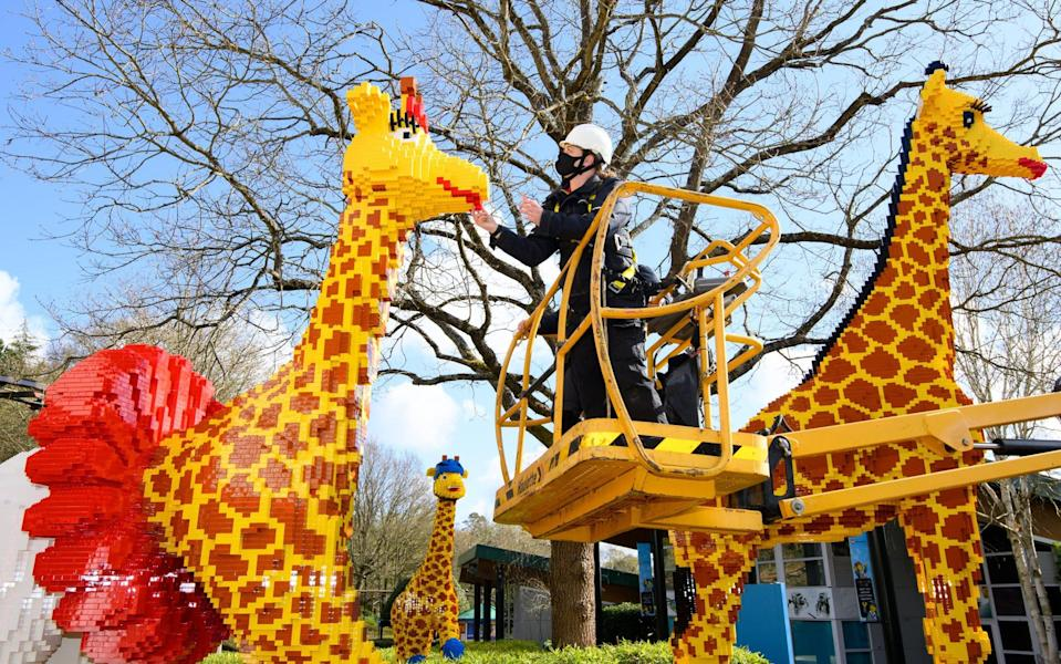 Roller-blading giraffes: a new addition to the park - LEGOLAND