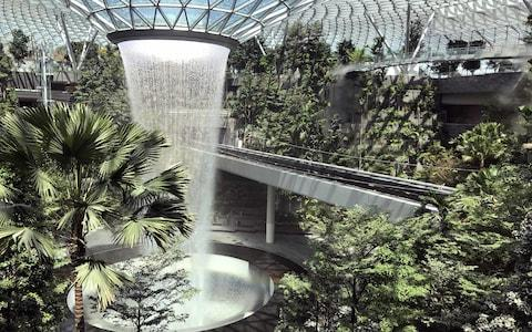 Jewel features more than 3,000 trees - Credit: changi airport