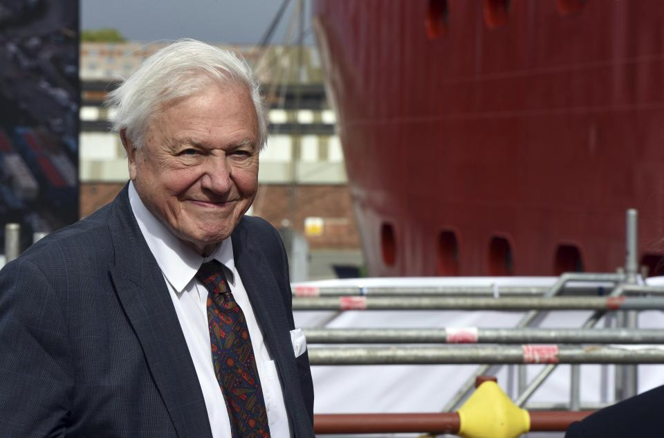 David Attenborough smiles at a ceremony for the naming of the RRS Sir David Attenborough at Camel Laird shipyard, Birkenhead, England, Thursday, Sept. 26, 2019. (Asadour Guzelian/Pool Photo via AP)