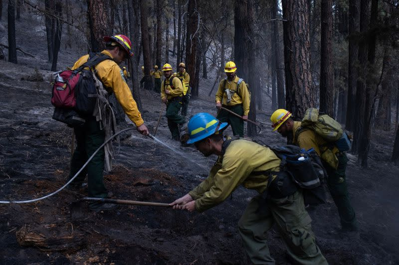 Wider Image: Oregon inmates find redemption in fighting wildfires