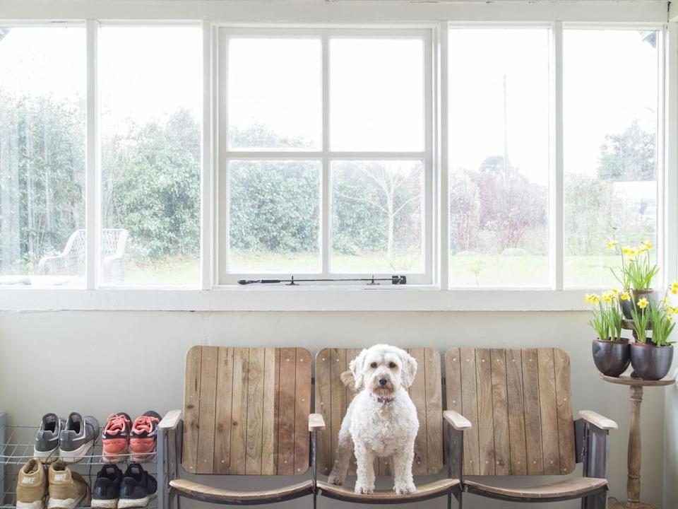 """<p>Among the wooden beams and wonky floors, this characterful farmhouse is filed with some of the owners' (Deborah and Charles) favourite things: books, fresh flowers and enchanting artwork to name a few.</p><p>At dog-friendly B&B <a href=""""https://go.redirectingat.com?id=127X1599956&url=https%3A%2F%2Fwww.booking.com%2Fhotel%2Fgb%2Fforthay-bed-and-breakfast.en-gb.html%3Faid%3D2070935%26label%3Ddog-friendly-bed-breakfast&sref=https%3A%2F%2Fwww.countryliving.com%2Fuk%2Ftravel-ideas%2Fdog-friendly%2Fg35121802%2Fdog-friendly-bed-and-breakfast-uk%2F"""" rel=""""nofollow noopener"""" target=""""_blank"""" data-ylk=""""slk:Forthay"""" class=""""link rapid-noclick-resp"""">Forthay</a>, your pooch will enjoy racing around in the garden, once they've enjoyed their complimentary treats, of course. Meanwhile, you can curl up by the log-burner and toast marshmallows, play croquet on the lawn or head out to the Cotswolds (just fifteen minutes away) for an idyllic country ramble.</p><p><a class=""""link rapid-noclick-resp"""" href=""""https://go.redirectingat.com?id=127X1599956&url=https%3A%2F%2Fwww.booking.com%2Fhotel%2Fgb%2Fforthay-bed-and-breakfast.en-gb.html%3Faid%3D2070935%26label%3Ddog-friendly-bed-breakfast&sref=https%3A%2F%2Fwww.countryliving.com%2Fuk%2Ftravel-ideas%2Fdog-friendly%2Fg35121802%2Fdog-friendly-bed-and-breakfast-uk%2F"""" rel=""""nofollow noopener"""" target=""""_blank"""" data-ylk=""""slk:CHECK AVAILABILITY"""">CHECK AVAILABILITY</a></p>"""