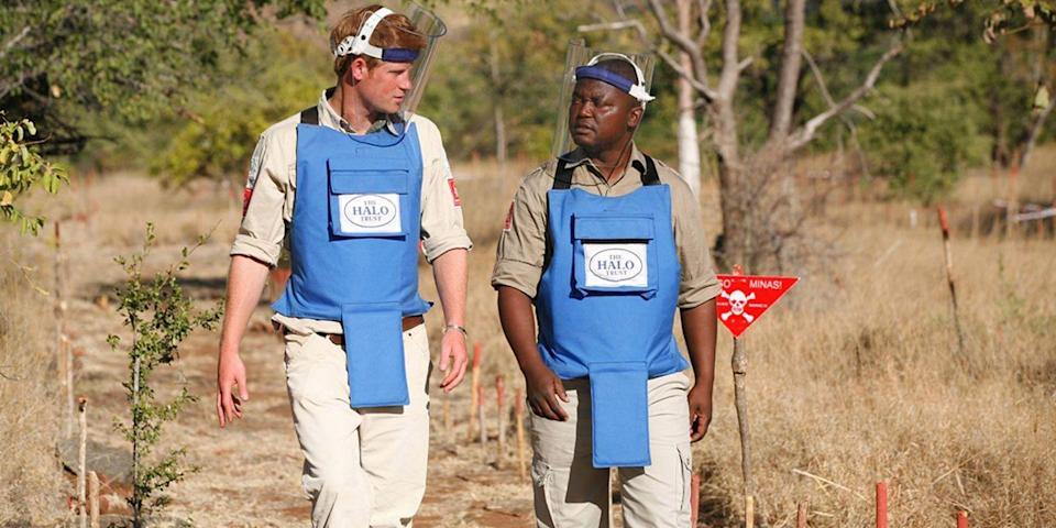 <p>Harry walks with a leader of The HALO Trust, a British charity dedicated to removal of landmines, in Cahora Bassa, Mozambique.</p>