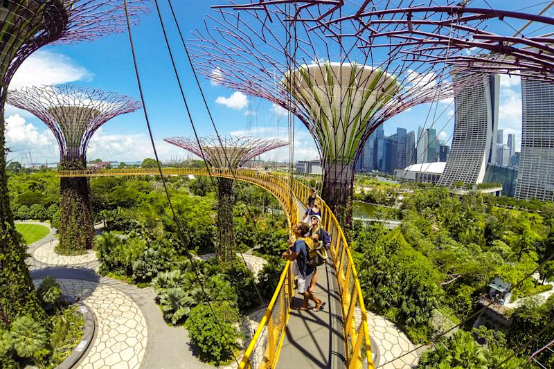 Singapore, the elevated OCBC Skyway through the Supertrees at the Gardens by the Bay. The elevated walkway is 22 meters above ground.