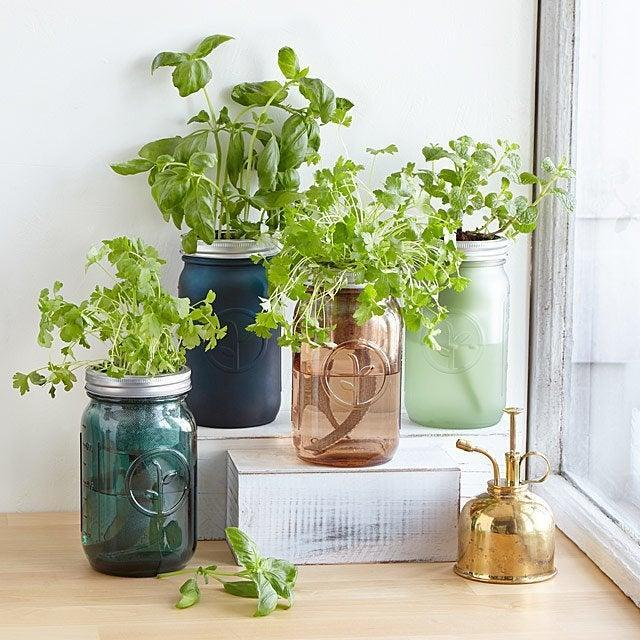 """<h2>Mason Jar Indoor Herb Garden</h2><br><strong>Best For: Grandparents<br>Budget: $20</strong><br>For the grandparents that have developed somewhat of a green thumb over the past year, these vintage-inspired planters make it easy to bring that passion indoors. <br><br><em>Shop <strong><a href=""""https://www.uncommongoods.com/product/mason-jar-indoor-herb-garden"""" rel=""""nofollow noopener"""" target=""""_blank"""" data-ylk=""""slk:Uncommon Goods"""" class=""""link rapid-noclick-resp"""">Uncommon Goods</a></strong></em><br><br><strong>Uncommon Goods</strong> Mason Jar Indoor Herb Garden, $, available at <a href=""""https://go.skimresources.com/?id=30283X879131&url=https%3A%2F%2Fwww.uncommongoods.com%2Fproduct%2Fmason-jar-indoor-herb-garden"""" rel=""""nofollow noopener"""" target=""""_blank"""" data-ylk=""""slk:Uncommon Goods"""" class=""""link rapid-noclick-resp"""">Uncommon Goods</a>"""