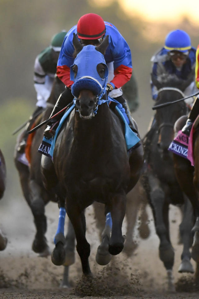 """Abel Cedillo aboard Mongolian Groom runs in the Breeders' Cup Classic horse race at Santa Anita Park, Saturday, Nov. 2, 2019, in Arcadia, Calif. Cedillo eased him up near the eighth pole in the stretch. On-call vet says he has """"serious"""" injury to leg. Was taken to equine hospital on the grounds. (AP Photo/Mark J. Terrill)"""