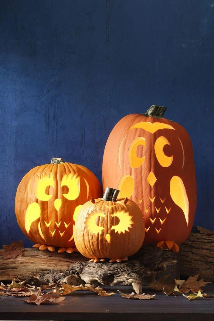 """<p>Decorate your porch with this family of watchful owls. You can even get the kids to join you in carving, but keep an eye out for any accidents. </p><p><em><strong>Get the stencils for <a href=""""http://wdy.h-cdn.co/assets/15/38/1442607915-mom-owl.png"""" rel=""""nofollow noopener"""" target=""""_blank"""" data-ylk=""""slk:Mom"""" class=""""link rapid-noclick-resp"""">Mom</a>, <a href=""""http://wdy.h-cdn.co/assets/15/38/1442607944-dad-owl.png"""" rel=""""nofollow noopener"""" target=""""_blank"""" data-ylk=""""slk:Dad"""" class=""""link rapid-noclick-resp"""">Dad</a>, and <a href=""""http://wdy.h-cdn.co/assets/15/38/1442607881-baby-owl.png"""" rel=""""nofollow noopener"""" target=""""_blank"""" data-ylk=""""slk:Baby"""" class=""""link rapid-noclick-resp"""">Baby</a> Owl Pumpkin Carvings.</strong></em></p>"""