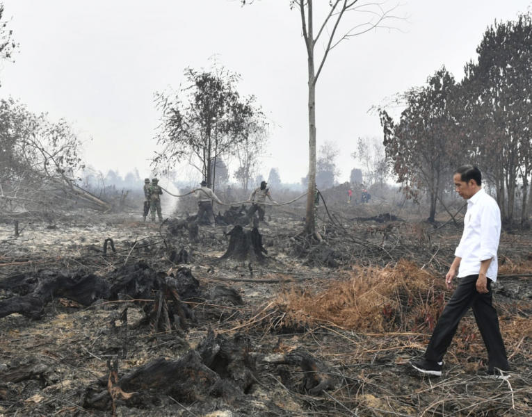 In this photo released by Indonesian Presidential Secretariat, Indonesian President Joko Widodo walks on a burnt forest as firefighters are seen spraying water to extinguish the remaining fire in Pelalawan, Riau province, Indonesia, Tuesday, Sept. 17, 2019. Widodo traveled to the area hardest hit by forest fires, as neighboring countries urged his government to do more to tackle the blazes that have spread a thick, noxious haze around Southeast Asia. (Laily Rachev, Indonesian Presidential Secretariat via AP)