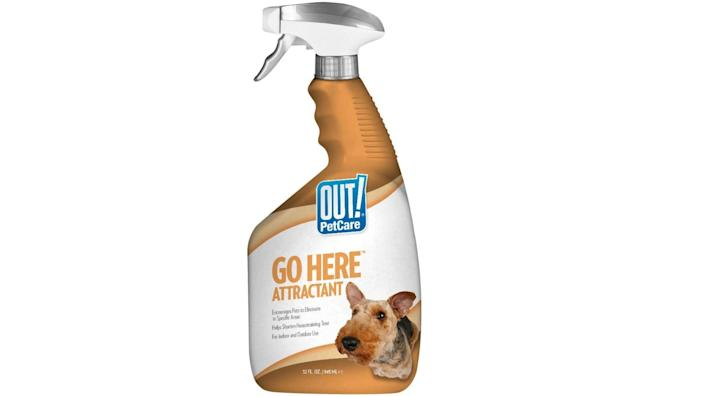 OUT! PetCare Go Here Attractant Spray Bottle - Amazon, $16