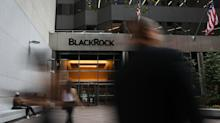 BlackRock Exposes Confidential Data on Thousands of Advisers on iShares Site