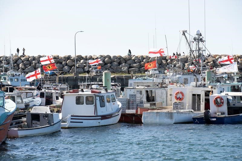 'Not a conservation concern': N.S. Mi'kmaq won't deplete lobster stock, says expert
