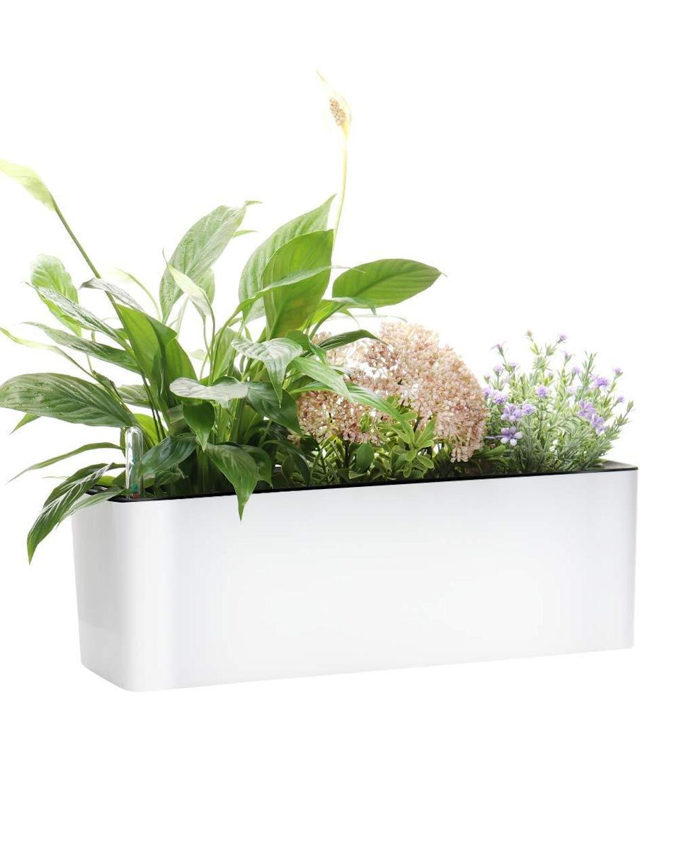 """<h2>GardenBasix Self Watering Planter Pots Window Box</h2><br><strong>Best For: Balconies + Window Sills</strong><br>An elongated square-shaped planter looks great on balconies, window sills, and anywhere that gives its shrubs enough room to shine. This planter comes with an easy-to-read water level indicator so you know exactly when to refill and include for coconut coir soil compartments to store up to four small plants.<br><br><em>Shop</em> <strong><em><a href=""""https://amzn.to/3h7S3b6"""" rel=""""nofollow noopener"""" target=""""_blank"""" data-ylk=""""slk:GardenBasix"""" class=""""link rapid-noclick-resp"""">GardenBasix</a></em></strong><br><br><strong>GardenBasix</strong> Self Watering Planter Pots Window Box, $, available at <a href=""""https://amzn.to/3urupKz"""" rel=""""nofollow noopener"""" target=""""_blank"""" data-ylk=""""slk:Amazon"""" class=""""link rapid-noclick-resp"""">Amazon</a>"""