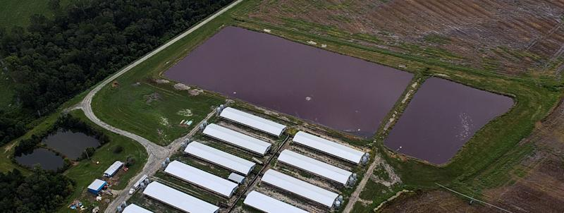 Aerial view of a hog farm after the passing of Hurricane Florence in eastern North Carolina, U.S., September 17, 2018.