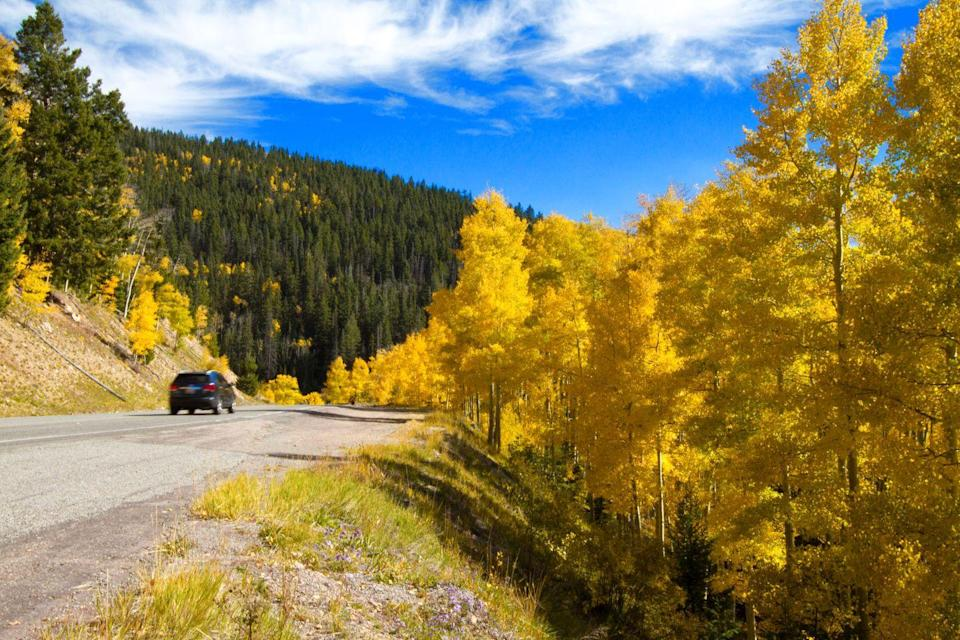 """<p>Aspen-seeking leaf-peepers will especially love this 83-mile loop—more specifically, the city of Taos—where aspens turn yellow and dark orange by early October. However, according to New Mexico tourism, the area's foliage season <a href=""""https://www.newmexico.org/fall-events/fall-colors/"""" rel=""""nofollow noopener"""" target=""""_blank"""" data-ylk=""""slk:can be unpredictable"""" class=""""link rapid-noclick-resp"""">can be unpredictable</a> and fleeting, so visiting at its peak in early October may be your best bet. While you're there, an infamous <a href=""""https://www.newmexico.org/events/balloon-fiestas-rallies/"""" rel=""""nofollow noopener"""" target=""""_blank"""" data-ylk=""""slk:hot air balloon ride"""" class=""""link rapid-noclick-resp"""">hot air balloon ride</a> is the perfect way to take it all in.</p>"""