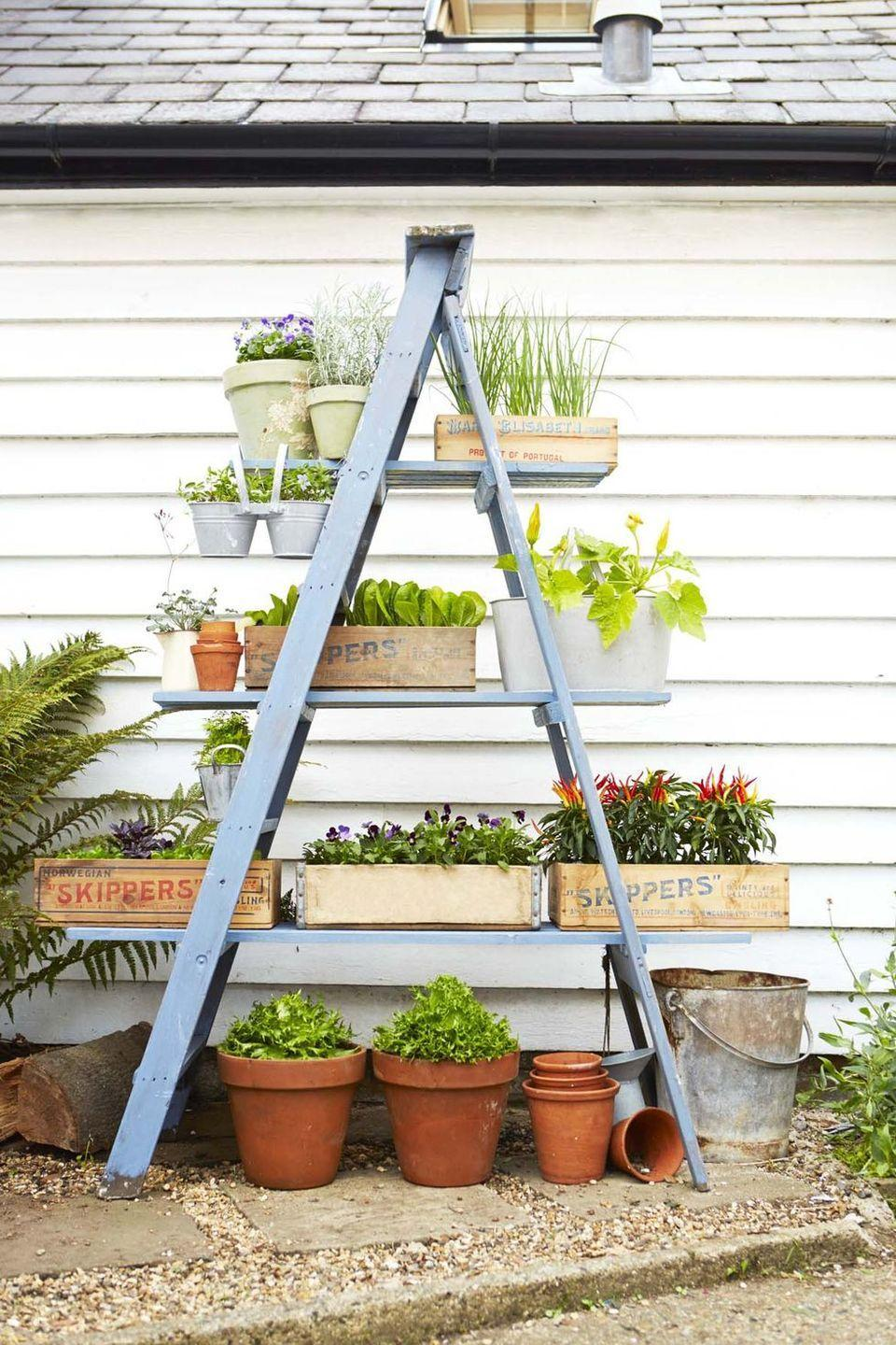 """<p>Turn a wooden ladder into a vertical stand for potted flowers, veggies, and herbs. Just give it a fresh coat of paint before you put it out on display. </p><p><em><a href=""""https://www.goodhousekeeping.com/home/gardening/advice/g76/diy-ladder-planter/"""" rel=""""nofollow noopener"""" target=""""_blank"""" data-ylk=""""slk:Get the tutorial »"""" class=""""link rapid-noclick-resp"""">Get the tutorial »</a></em></p>"""