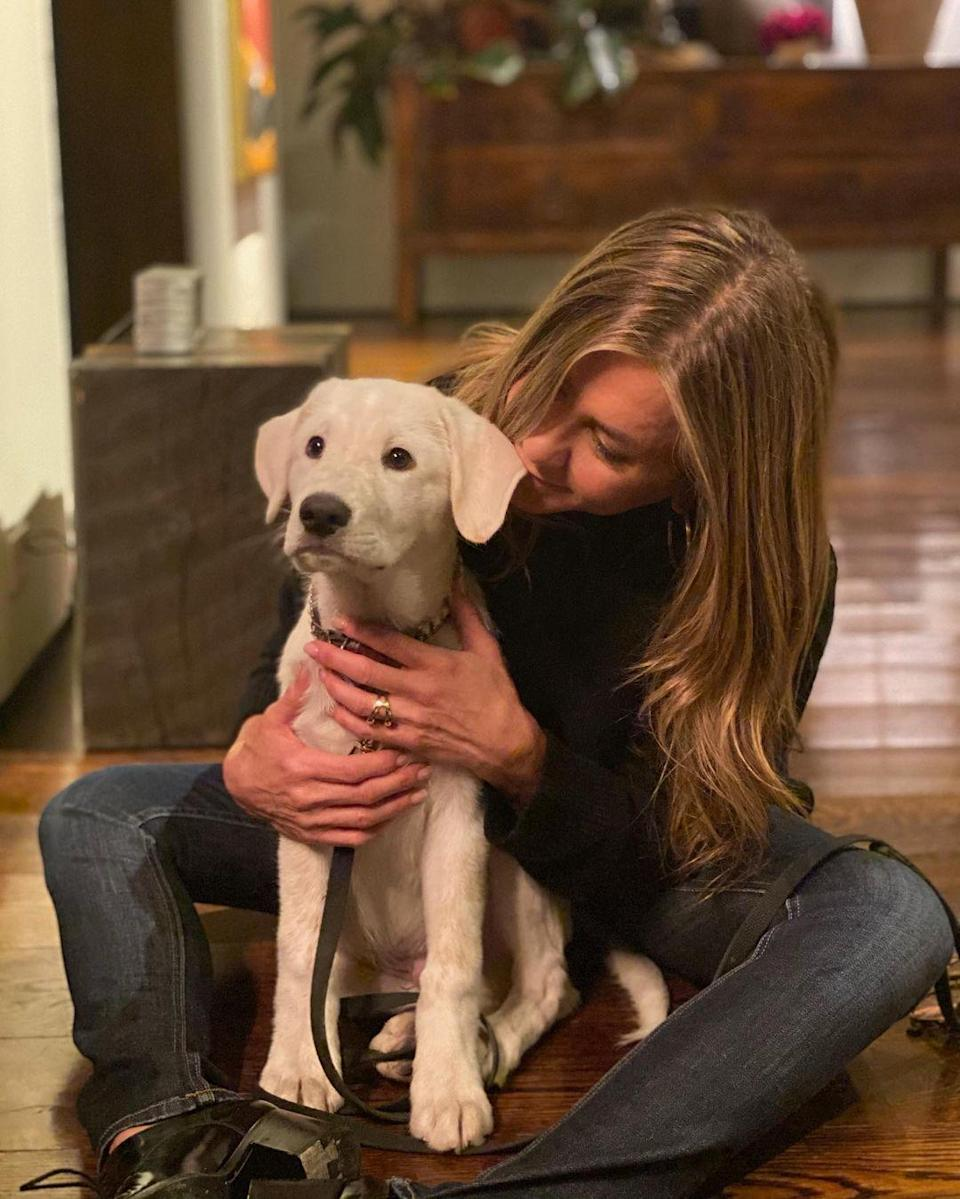 """<p>Aniston celebrated her first Thanksgiving with her rescue puppy, Lord Chesterfield. In a trio of snuggly snaps, the actress shows off her fur baby, who she <a href=""""https://people.com/pets/jennifer-aniston-introduces-new-dog-lord-chesterfield/"""" rel=""""nofollow noopener"""" target=""""_blank"""" data-ylk=""""slk:introduced to fans last month"""" class=""""link rapid-noclick-resp"""">introduced to fans last month</a>. </p> <p>""""We're grateful 🙏🏼❤️,"""" she <a href=""""https://www.instagram.com/p/CIEI09eDtrX/"""" rel=""""nofollow noopener"""" target=""""_blank"""" data-ylk=""""slk:captioned the Instagram post"""" class=""""link rapid-noclick-resp"""">captioned the Instagram post</a>.</p>"""