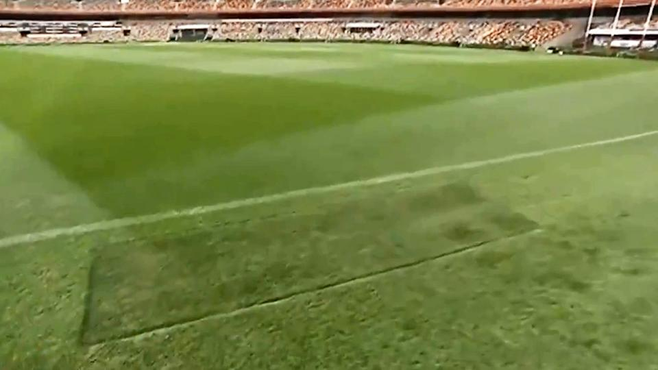 The MCG turf, pictured here outside the boundary line at the Gabba.