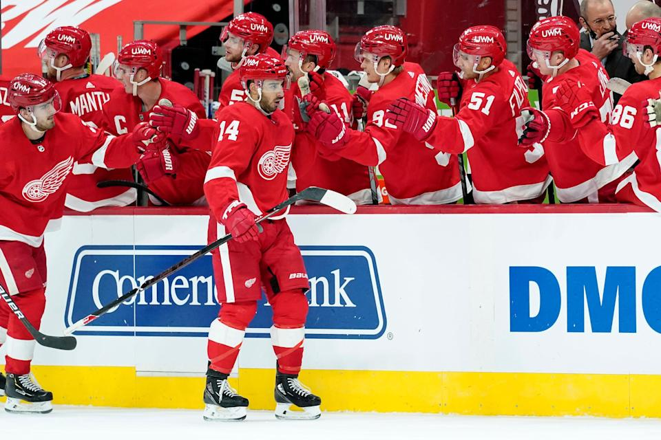 Detroit Red Wings center Robby Fabbri (14) celebrates his goal against the Carolina Hurricanes in the third period of an NHL hockey game Saturday, Jan. 16, 2021, in Detroit.