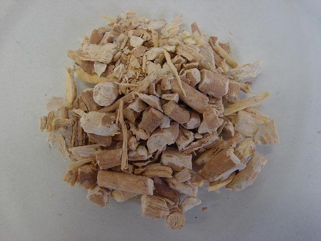 The AYUSH Ministry is testing herbs such as Ashwagandha, or Indian ginseng, as potential medicines for treating COVID-19. Image credit: By Maša Sinreih in Valentina Vivod - Own work, CC BY-SA 3.0, https://commons.wikimedia.org/w/index.php?curid=17815733