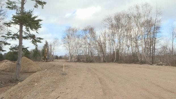 This area of the park used to be trees and vegetation but it's recently been cleared and filled in to make room for 80 to 100 RV lots.