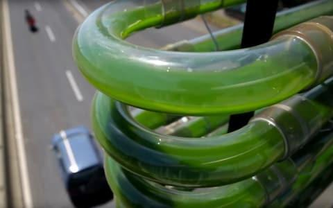 An algae farm on a bridge near Geneva created by Cloud Collective